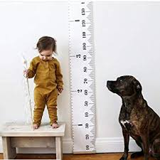 Buy Kids Growth Chart Hanging Wall Ruler Height Chart For