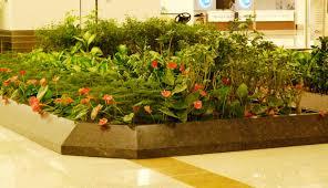 indoor pots planters