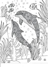 Coloring Pages Dolphin Coloring Pages Online Likeable Sheet