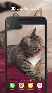 Cute Cat Live Wallpaper for Android ...