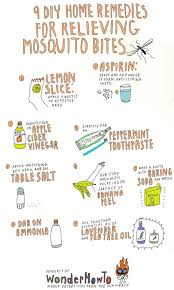 How To: 9 DIY Home Remedies for Relieving Itchy Mosquito Bites ...