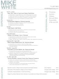 Professional Resume Examples Professional Resume Templates Design