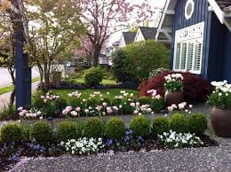 Emphasize the path to your door by lining it with rows of small shrubs,  miniature roses and other low-growing plants. If you have room to spare on  either ...