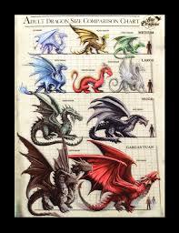 3d Picture Dragon Size Comparison Chart