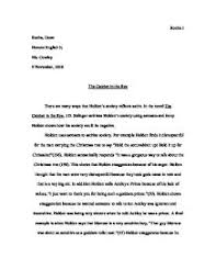 satire letter examples co satire letter examples