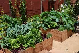 kitchen garden ideas innovative patio vegetable tiny backyard garden fantastic vegetable ideas for gardens diy