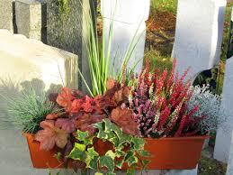 Bepflanzter Balkonkasten 60 Cm Wintergr N Im Bew Sserungskasten Bepflanzter Balkonkasten Cm Sedum Wintergruen