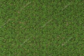 wild grass texture. Fine Texture Wild Grass Texture U2014 Stock Photo For Grass Texture U