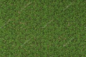 wild grass texture. Wild Grass Texture \u2014 Stock Photo