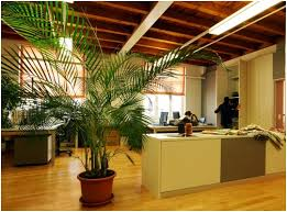 green eco office building interiors natural light. Green Eco Office Building Interiors Natural Light ,