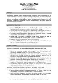 Resume Profile Resume Profile Profile Resume Examples For Customer