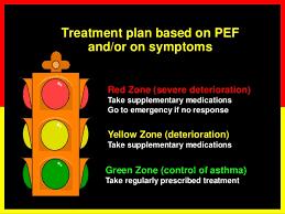 Asthma Zone Chart Asthma Basics