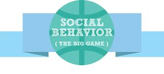 Social Behavior The Big Game A Study With Surveymonkey Iacquire