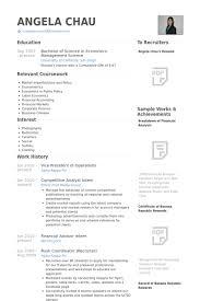 Vice President Of Operations Resume Samples Visualcv Resume
