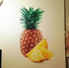 pineapple drawing color. realistic pineapple drawing color n