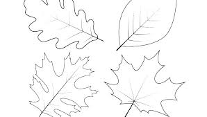 jungle leaves coloring pages jungle leaves coloring pages coloring page leaves large maple leaf stencil printable