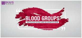 Blood Groups Abo Blood Group Rh Blood Group Systems Byjus