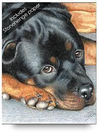 Small Picture Rottweiler Tegninger Pinterest