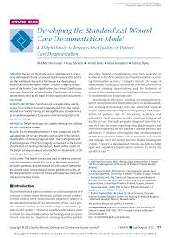 Wound Charting Examples Pdf Developing The Standardized Wound Care Documentation