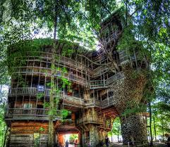 pallet tree house ideas