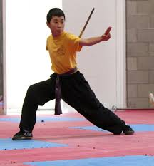 Junior Dragons Ages 6 10 Pure Shaolin Kung Fu