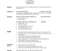 Federal Resume Help Resume Online Builder