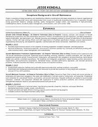 Beautiful Resume Double Major Pictures Inspiration Professional