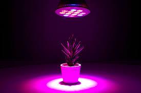 E27 Sockel Lampe · Lampenfächer · LEDs Der Pflanzenlampe · Pflanze  Beleuchtet ...