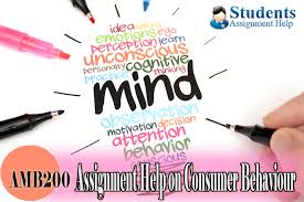 amb assignment help on consumer behaviour sample  amb200 assignment help on consumer behaviour sample assignments custom writing help students assignment help