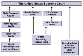 United States Court System Flow Chart Pipat Trainee Grade Book Training 4 Private Investigators