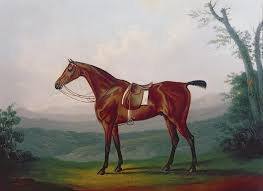 daniel c painting portrait of a race horse by daniel c