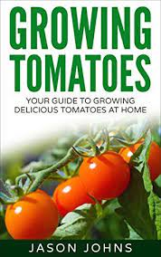 vegetable garden planning growing tomatoes