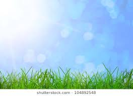 grass and sky backgrounds. Fine And Green Grass On The Sky Backgrounds Throughout Grass And Sky Backgrounds
