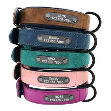 collardirect martingale dog collar rolled leather soft padded puppy small medium for