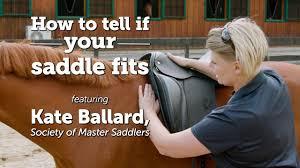 Barrel Saddle Size Chart Saddle Fitting Guide
