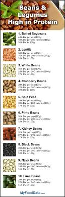 top 10 beans highest in protein