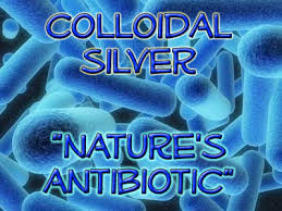 Image result for picture of pets and colloidal silver