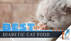 Diabetic Cat Food Chart 7 Best Diabetic Cat Foods Our 2019 Guide To Feeding A