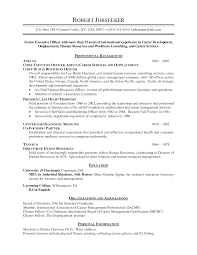 Examples Of A Chronological Resume