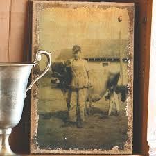boy cow burlap print farm wall art vintage style decor cow print