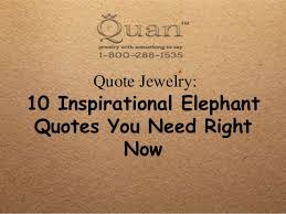 Elephant Quotes Magnificent 48 Inspirational Elephant Quotes You Need Right Now