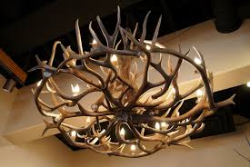 cool deer antler chandelier