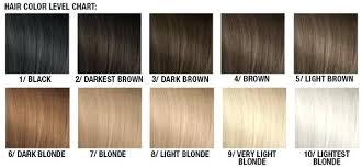 Orange Hair Colour Chart Orange Hair After Bleaching Il Studio Com