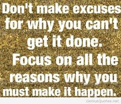 Excuses Quotes Amazing Excuses Quote