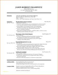 Resume Formats For Word With Resume Template Microsoft Word 2007