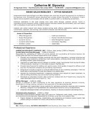 Resume Templates Account Director Examples Sales Manager Summary