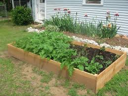 Kitchen Garden Planter Container Vegetable Gardening Designing Your Container Vegetable