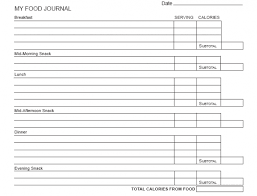 free food journal template printable daily food log template