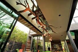 rustic tree branch chandeliers 25
