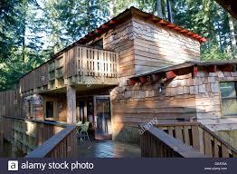 Oakdown Treehouse  Canopy U0026 StarsLongleat Treehouse